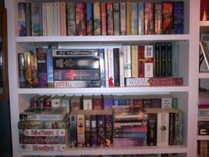A small sample of my bookshelves. Neat but full!